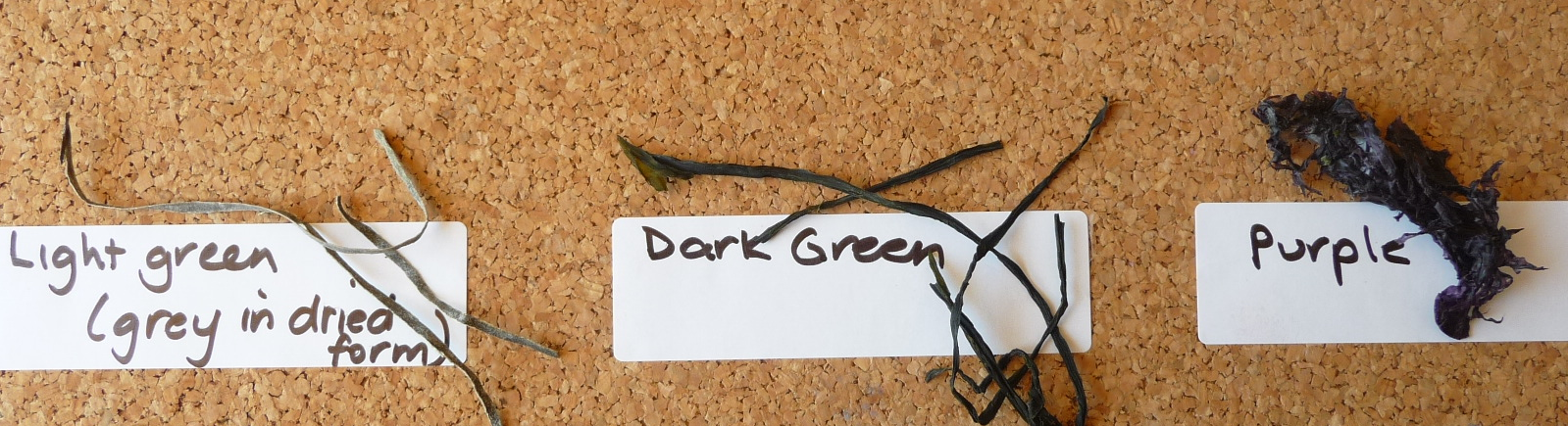 Natural Dark Green Seaweed Strips - 1g